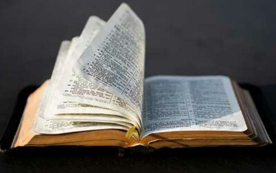 The Part of the Bible You're Missing